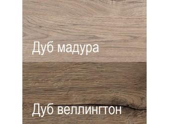 Шкаф-пенал Дизель 1V1D1S2N/D1 дуб веллингтон