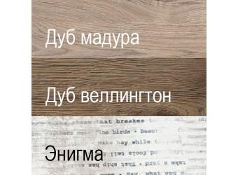 Шкаф-пенал Дизель 1V1D1S2N/D2 энигма